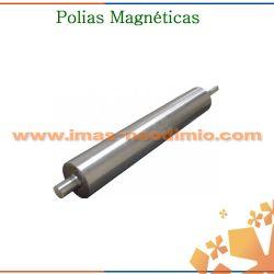 polia magnética
